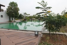 Bandipur pool