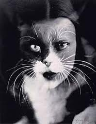 Kitty by Man Ray